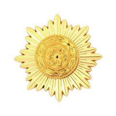 Ostvolk Medal 1st Class in Gold