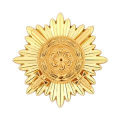 Ostvolk Medal 1st Class with Swords in Gold