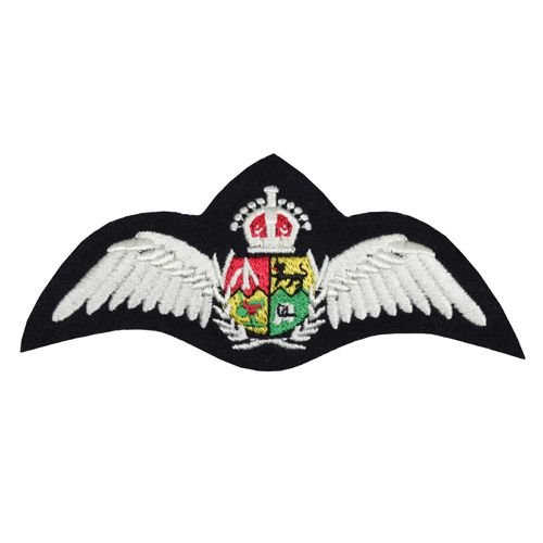 South African Air Force Pilot Wings